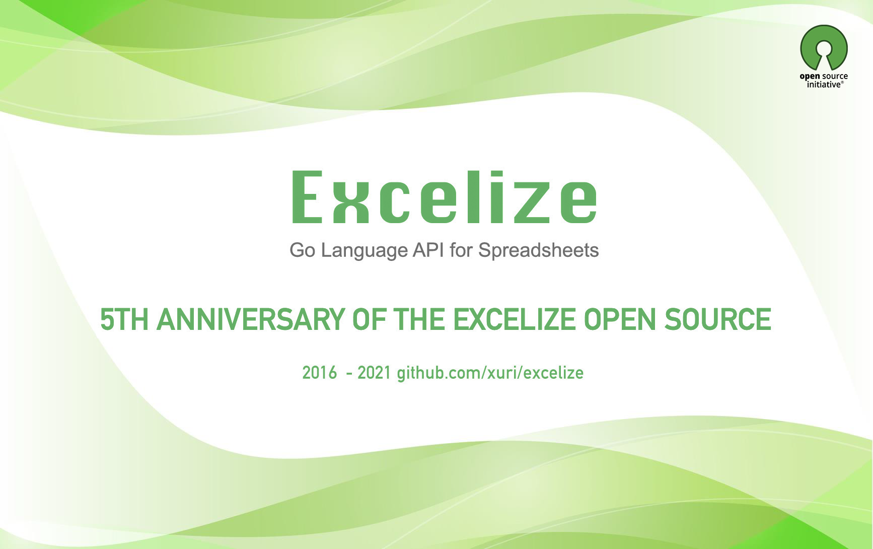 5th Anniversary of the Excelize Open Source
